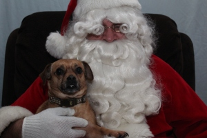 Ellie snuggling with Santa.