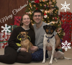 Christmas with the pups2