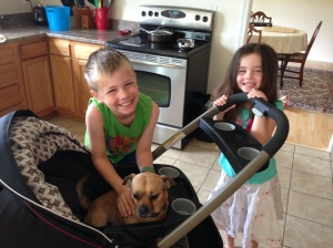 "Even the little humans got in on this 'baby stuff."" Mama and Daddy's cousins like ""walking"" me in the stroller."