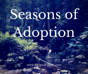 seasons of adoption fall